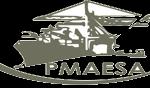 SQUARE_PMAESA